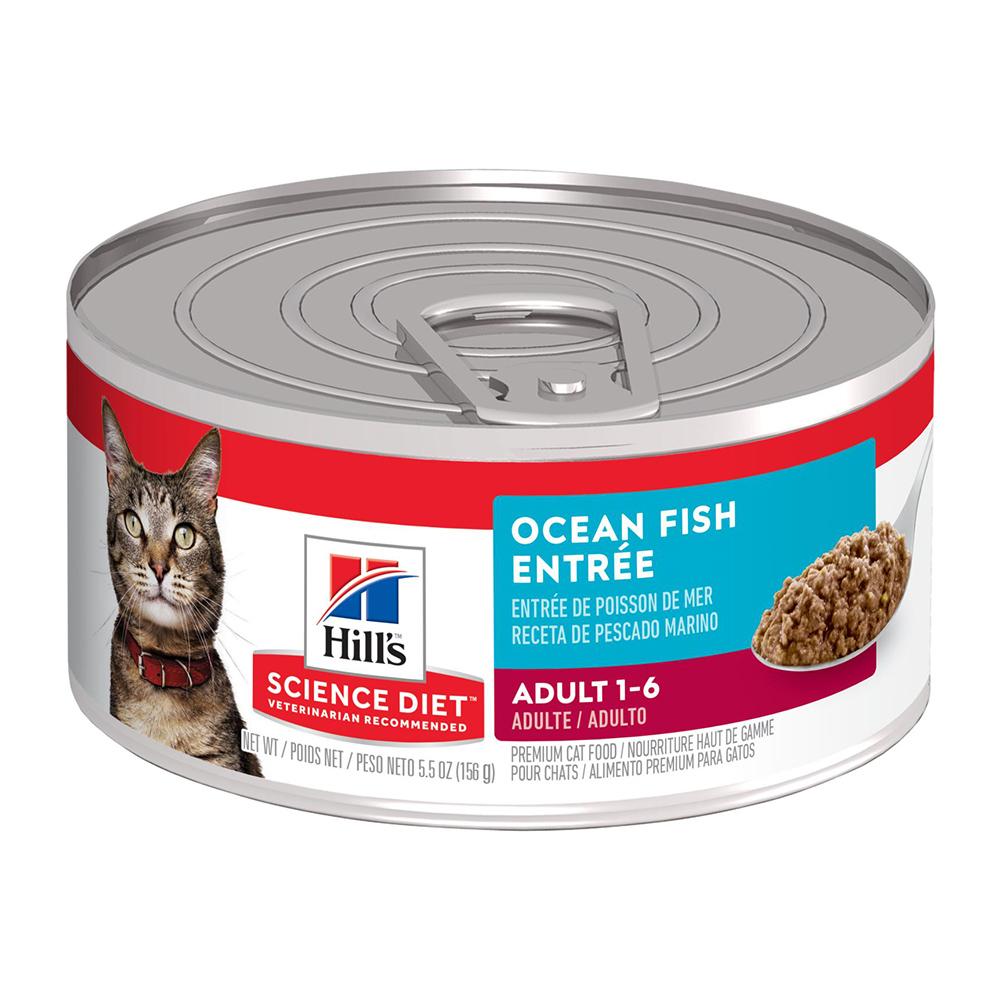 Hills SD Feline Adult Ocean Fish Entrée 156 gr.