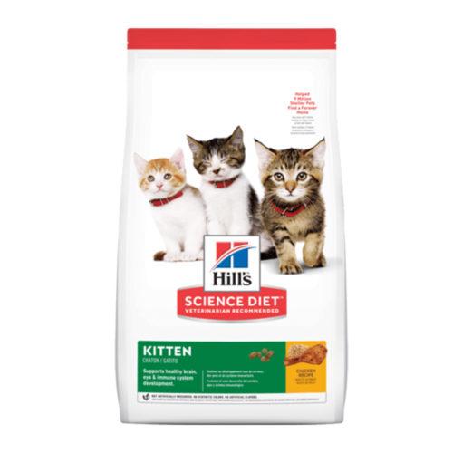 Hills SD Feline Kitten