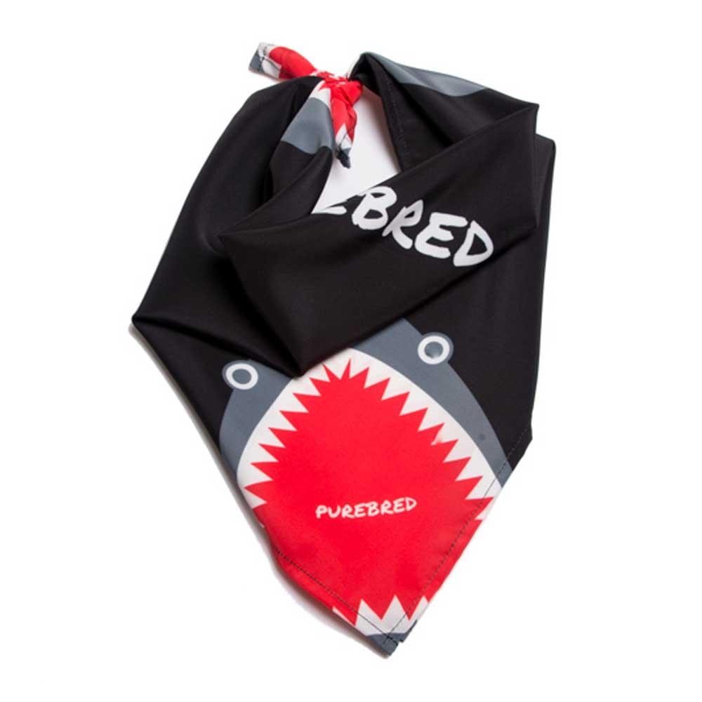 Purebred Bandana Shark