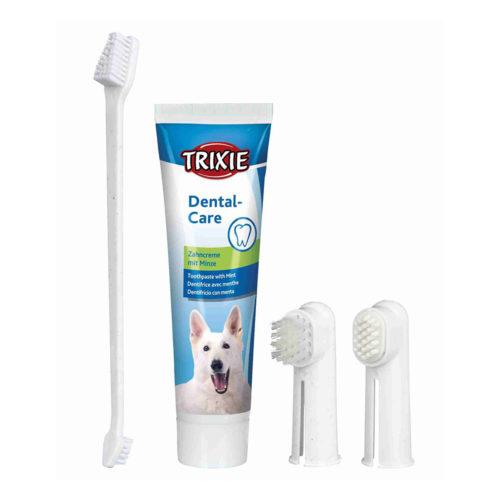 Trixie Set Dental Hygiene