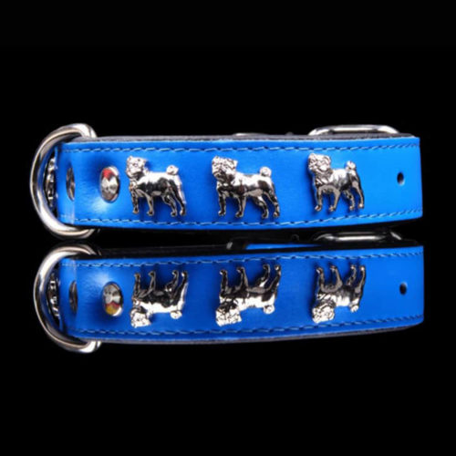 Fancy Dogs Collar Cuero Pug