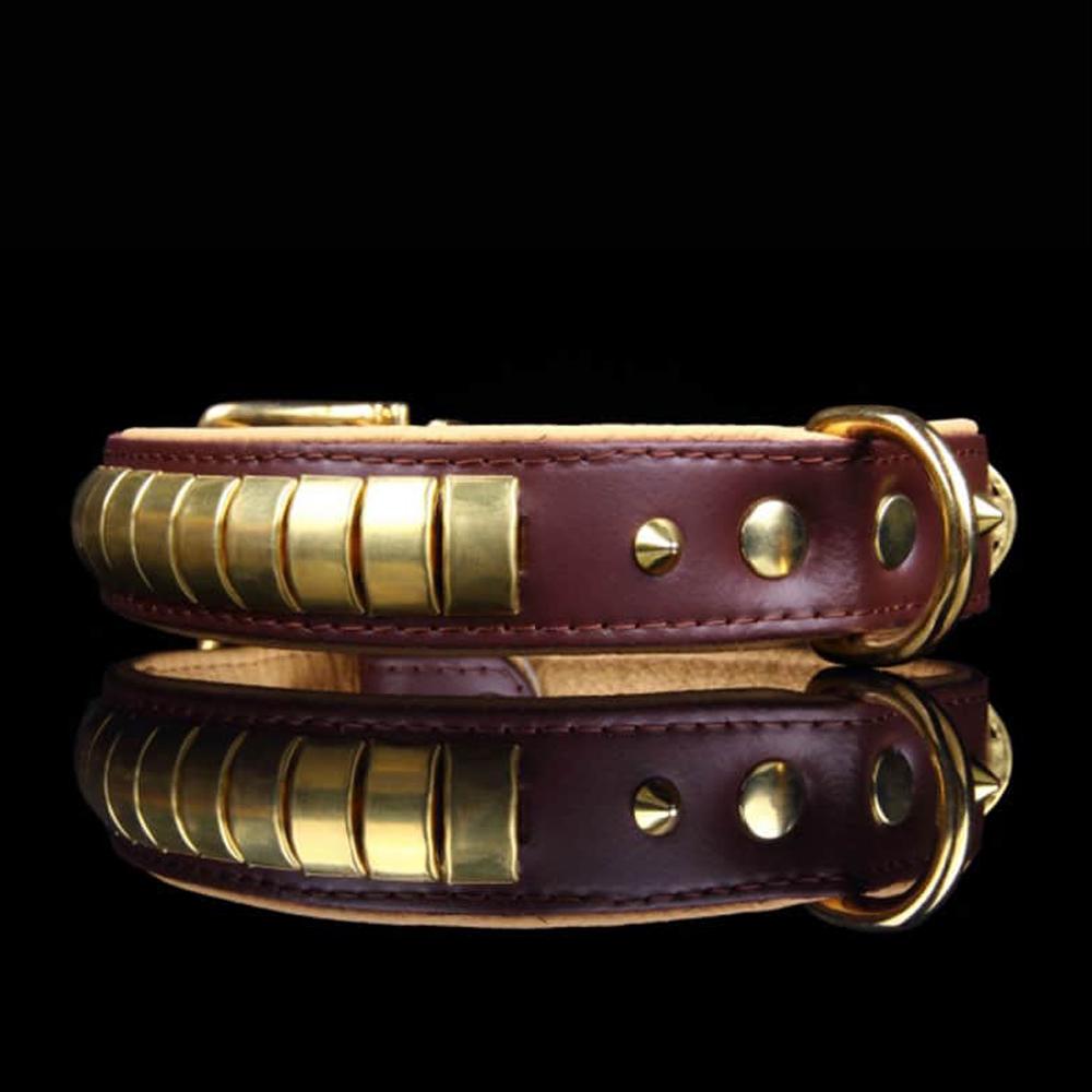 Fancy Dogs Collar Cuero Dorado