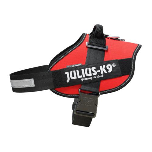Julius K9 Arnes IDC Power