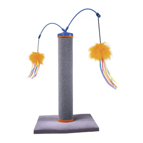 Smartykat Poste Scractch And Spin