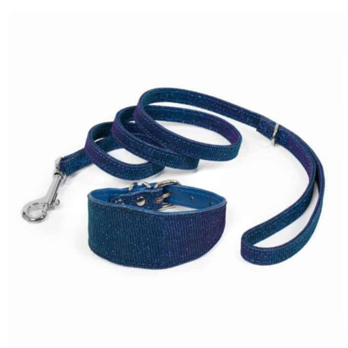 Farm Company Set Collar Y Correa Greyhound