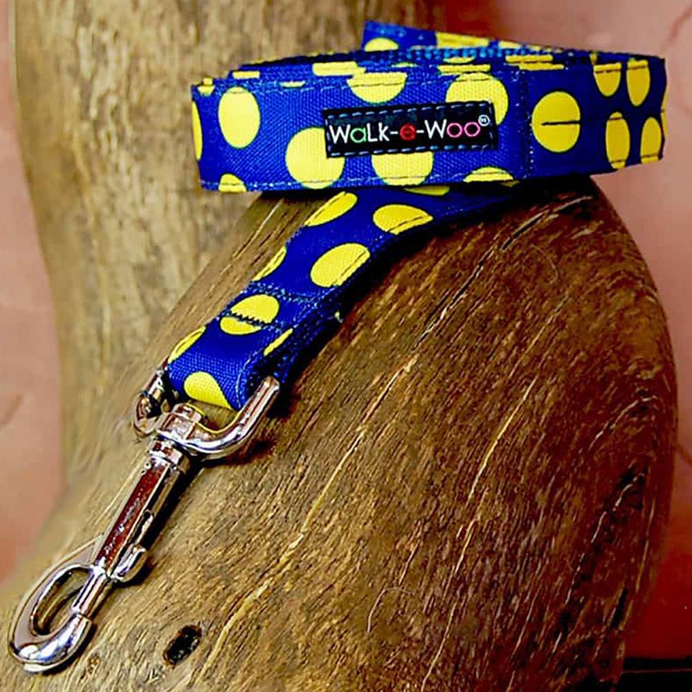 Walk e Woo Correa Polka Yellow On Blue