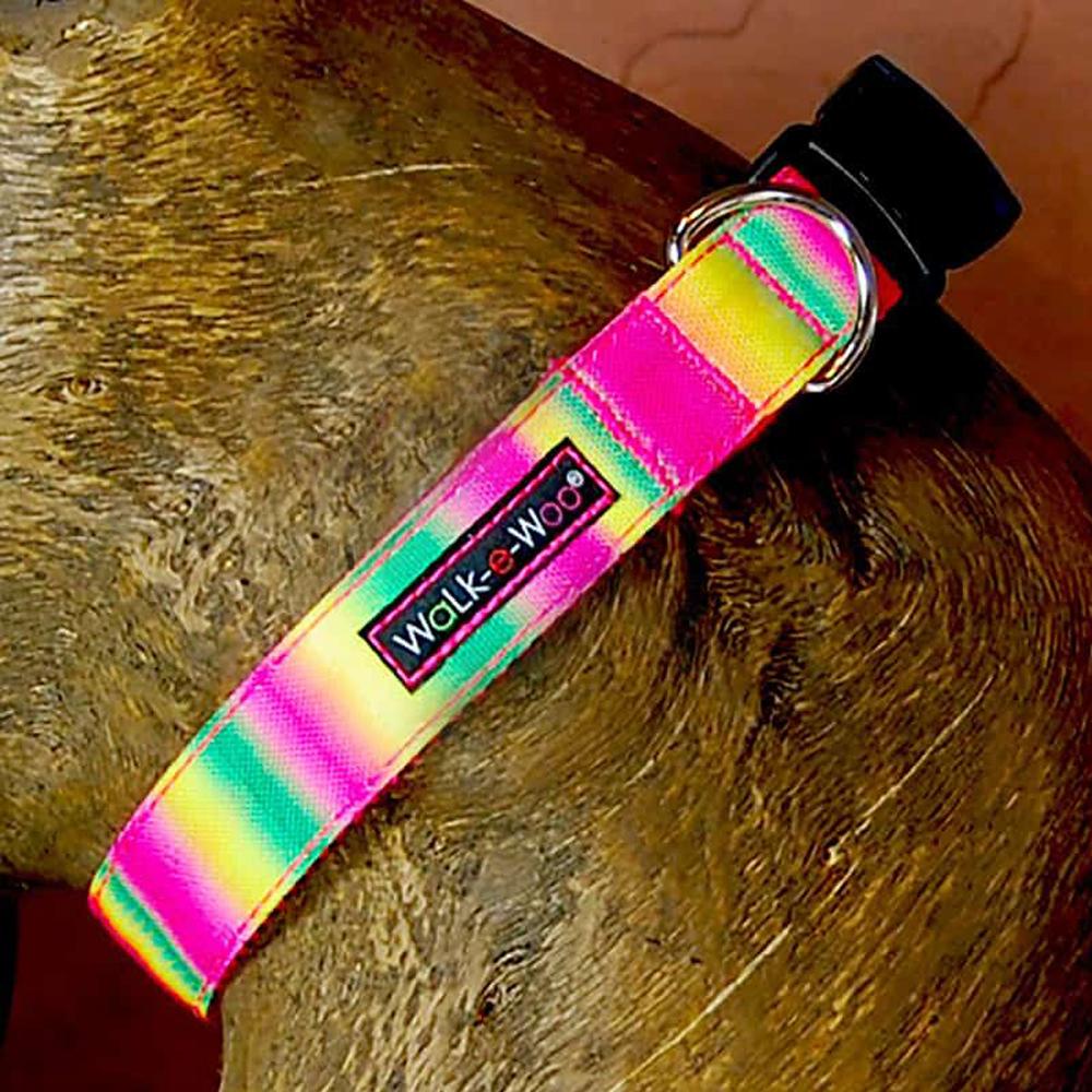 Walk e Woo Collar Tie Dye Pink/Green