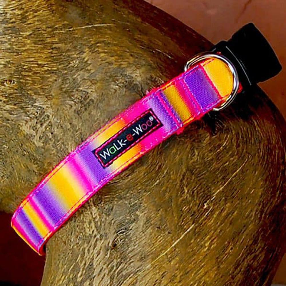 Walk e Woo Collar Tie Dye Pink/Purple