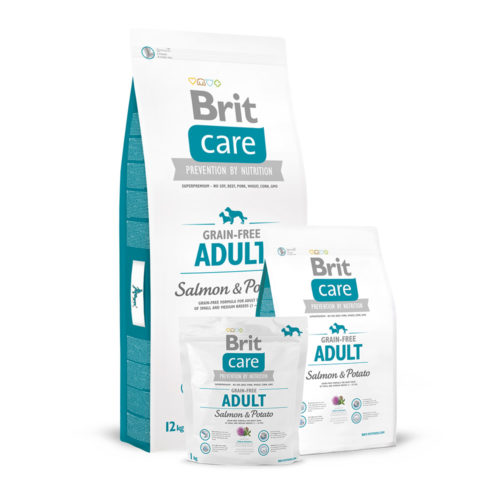 Brit Care GF Dog Adult Salmon & Potato