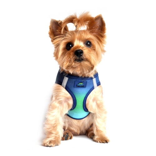 Doggie Design Arnes American River Nothern Lights